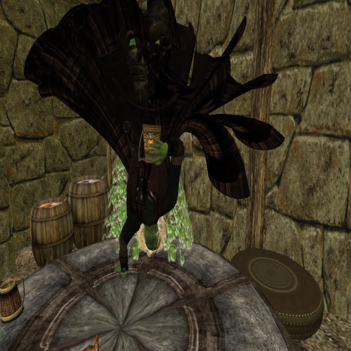 Drunken pixie in Raven's Inn?